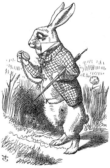 Alice-white-rabbit